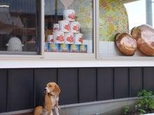 古材流通熊本店のブログ-イルフォルドール2