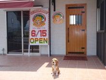 古材流通熊本店のブログ-マッキーピザ屋訪問