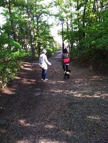あにぱぱ的日常-公園を行く2人と3頭