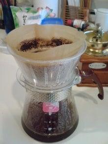 コーヒー成長記-gserfa