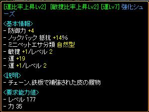 RELI姫のおてんば(?)日記-運敏靴