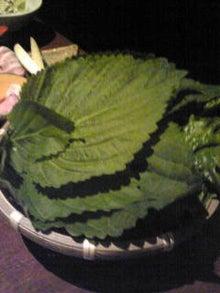 沖縄料理空くんのブログ-Image1663.jpg