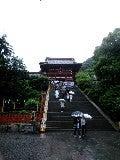 mai 燦々-鎌倉八幡宮.jpg