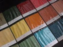 カラーコンサルタントRosa
