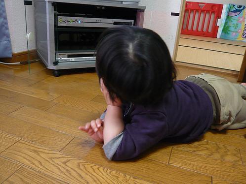 Grumpy Monkey(不機嫌なおさるさん)の観察日記-mini watching tv