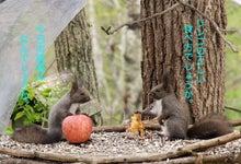 $ムツゴロウ動物王国のブログ-リス対談