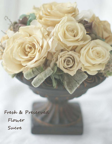 $Fresh & Preserved Flower Sucre