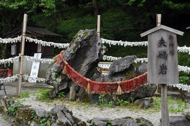 茶々吉とデジ一 のんびり旅-2010/6/20出雲大神宮1