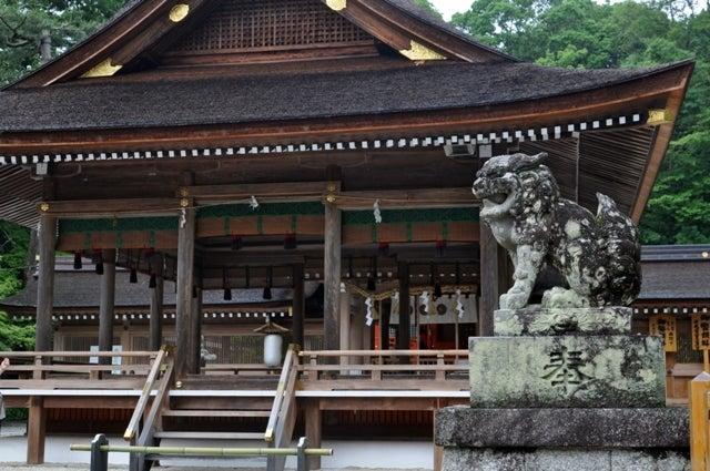茶々吉とデジ一 のんびり旅-2010/6/20出雲大神宮2