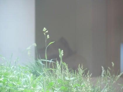 美→アダルト☆にきび→美