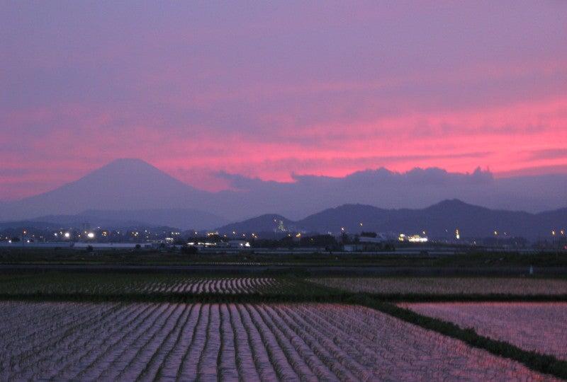 強烈な夕焼け富士山と田んぼ