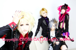 VISUAL ROCK CD SHOP CROSS CAT