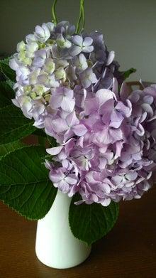 ~akkyの春夏秋冬~-2010062509530000.jpg