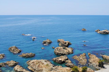 白神山地ツアーで能代山本地区の活性化すっぺ-福寿草イカ刺し丼6