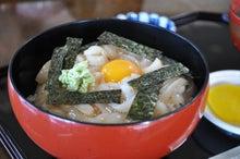 白神山地ツアーで能代山本地区の活性化すっぺ-福寿草イカ刺し丼2