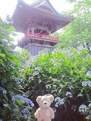 ☆なっちゃんブログ☆