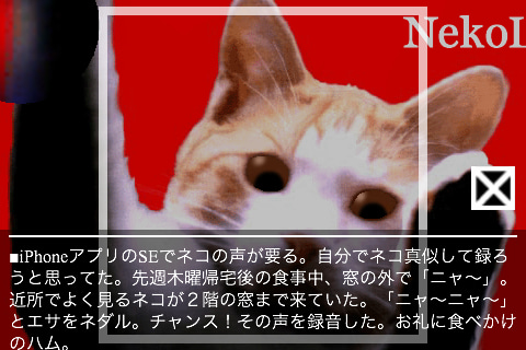 NekoLogy of RuffEDGE-twitter0