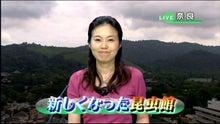 和田真由美さん   すべて俺のせ...