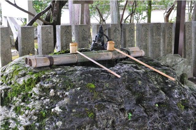 茶々吉とデジ一 のんびり旅-2010/6/30多田神社3