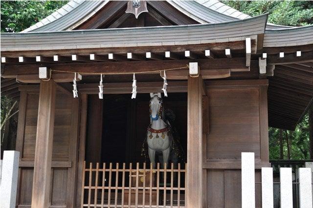茶々吉とデジ一 のんびり旅-2010/6/30多田神社4