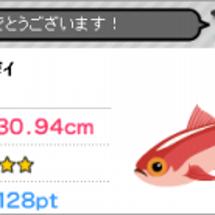 ピグ 釣りゲーム