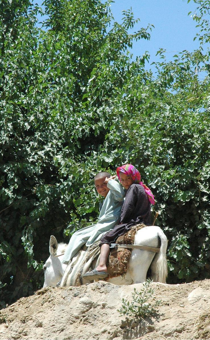 アフガニスタン便り-ロバと姉妹