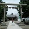 * 夏越の大祓いで浅草神社に・・・の画像