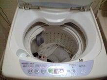 (´△`)ぴぃ?-洗濯