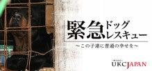 ☆ありちゃん&きんつば☆Diary