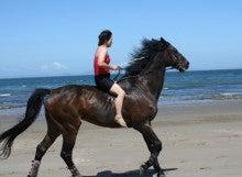 馬を愛する男のブログ Ebosi Kogen Hose Park -水着で裸馬