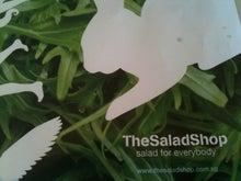 Last More  -斉藤泰一郎 ブログ--Salad3