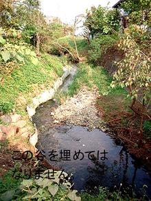 『落合川の小渓谷を保全する会』のブログ