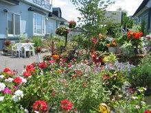 $音更町在住 建築士であり社長の 中谷彰 が仕事、生活を通じて感じたことを書いていきます。-きれいな花壇