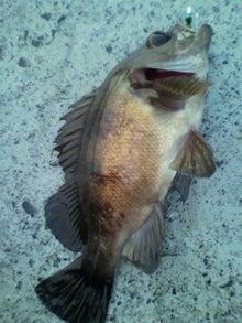 同心丸Jr.の釣り日記 『一魚一会』-2010072518240000.jpg