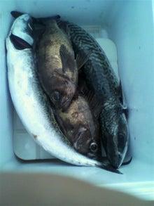 同心丸Jr.の釣り日記 『一魚一会』-2010072518390000.jpg