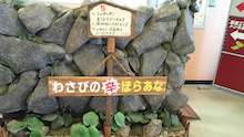 和田裕美公式ブログ