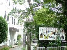 青空大地ブログ「昆虫探偵ヨシダヨシミ~レボリューション~」by Ameba-名和昆虫博物館