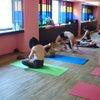 台北マイソールクラスの画像
