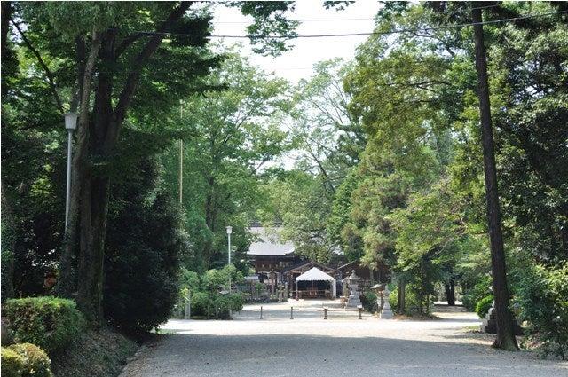 茶々吉とデジ一 のんびり旅-2010/7/27大和神社1