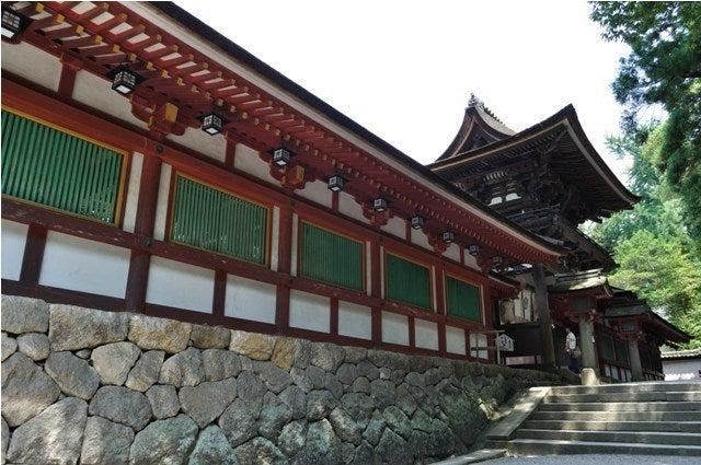 茶々吉とデジ一 のんびり旅-2010/7/27石上神宮6
