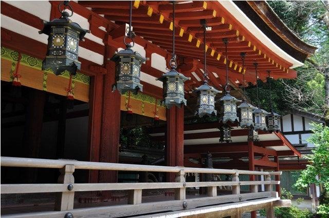 茶々吉とデジ一 のんびり旅-2010/7/27石上神宮8