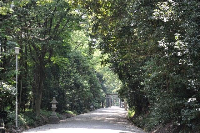 茶々吉とデジ一 のんびり旅-2010/7/27大和神社2