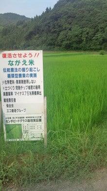 No Rice , No Life ~社長と専務と店長の独り言~