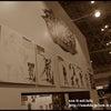 ワンダーフェスティバル2010[夏] 試遊御礼 !の画像