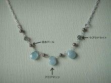 snow blossoms ゆきむし ギャラリー-1008ワークショップ-2