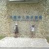 沖縄!!!!美ら海水族館☆☆の画像