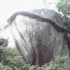 熊野の旅2の画像