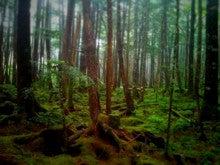 $ノーマ オフィシャルブログ「ノーマの遠吠え。」Powered by Ameba-きれい