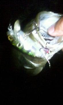 愛媛野池のバスフィッシング釣行記-マッジーで2