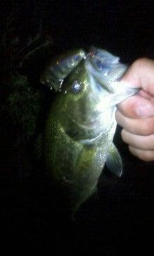 愛媛野池のバスフィッシング釣行記-マッジーで3